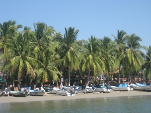 View of Zihuatanejo from the water taxi