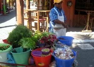 Cart vendor with fresh veggies and fruit
