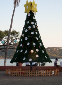 Christmas tree in the Zocolo