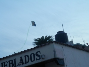 Kite over the Monarca Hotel
