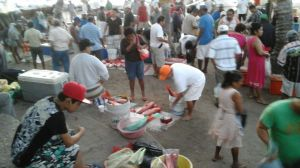 Very busy  morning for the  fishermen