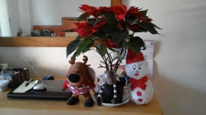 All decorated for Christmas complete with a cha cha-ing deer.