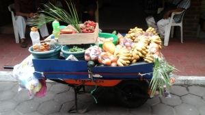 Bought strrawberrries and avocados off this cart steps from our door step